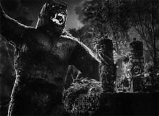 Kong schnappt sich Ann ...