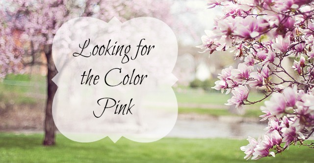 Looking for the Color Pink