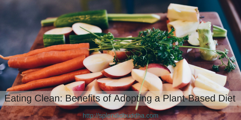 Eating Clean: Benefits of Adopting a Plant-Based Diet