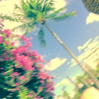 Cruising Palm Beach…where to eat, shop, roam…