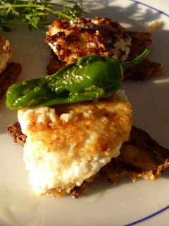 Fried Goat Cheese Medallions