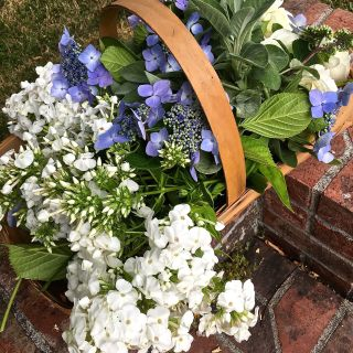 Blue and white garden bouquets in antique sauciers…