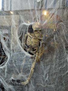 Skellie behind glass