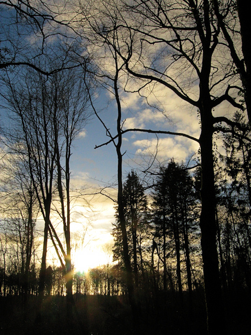 January evening
