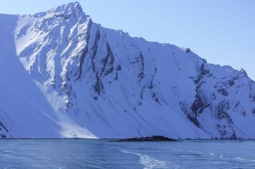 Which is pretty easy to find in Svalbard