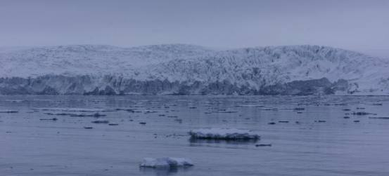Within an hour of sailing out of the capital Lonyearbyen we were greeted with views like this
