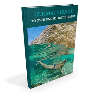 Ultimate over under photography guide
