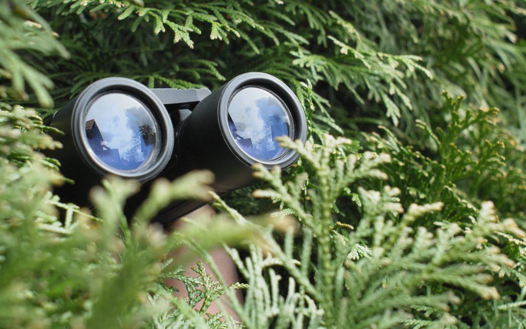 Keep Your Eye on the SPY