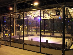 The Robo Challenge Arena