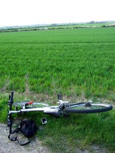My bike in the Sleaford countryside