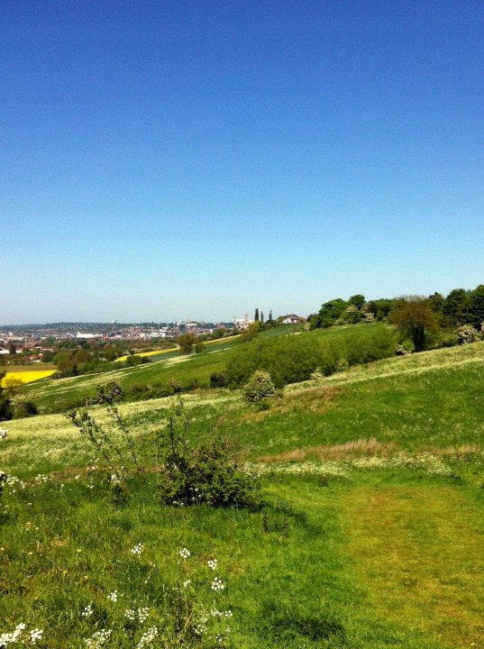 View to Lincoln from the Viking Way