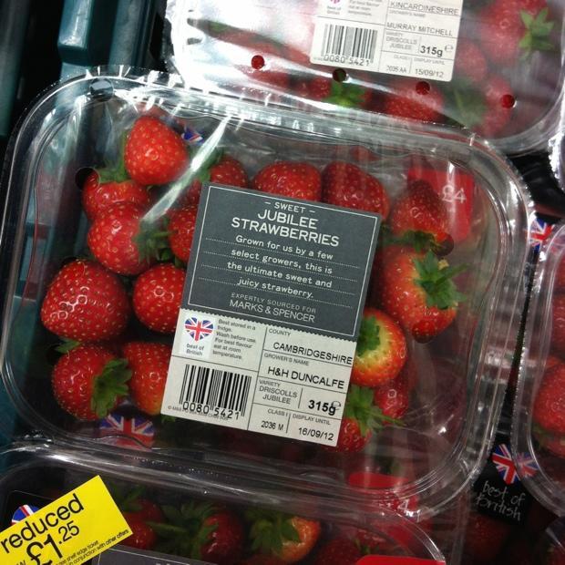 Snap Happy 13th September - Berries