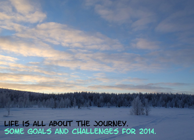 Goals and Challenges for 2014