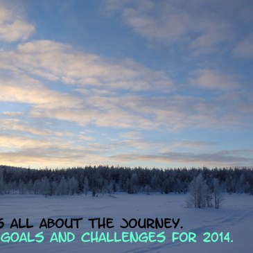 Some Goals and Challenges for 2014 – An Update