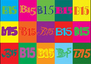 B15 Logo