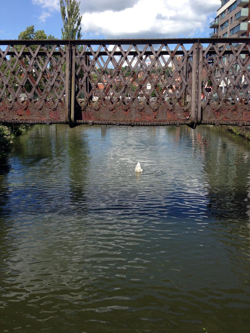 10 June - Old bridge in Lincoln
