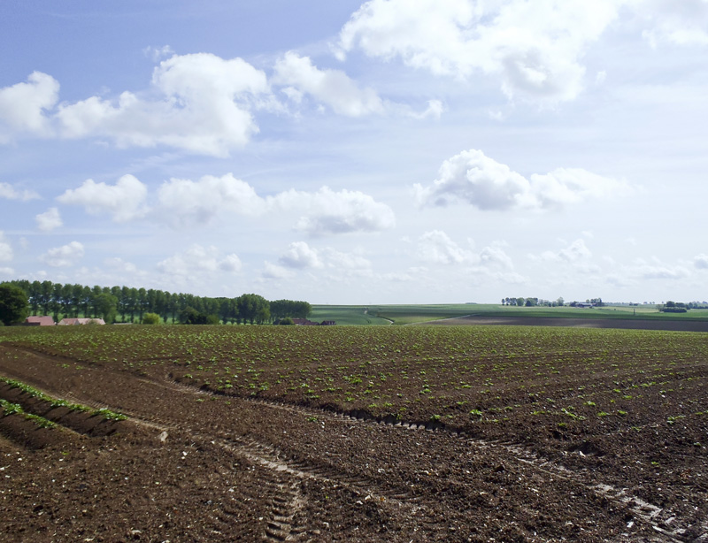 First World War Battlefield in the Somme