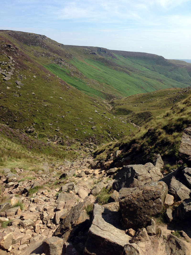 The path down Grinds Brook
