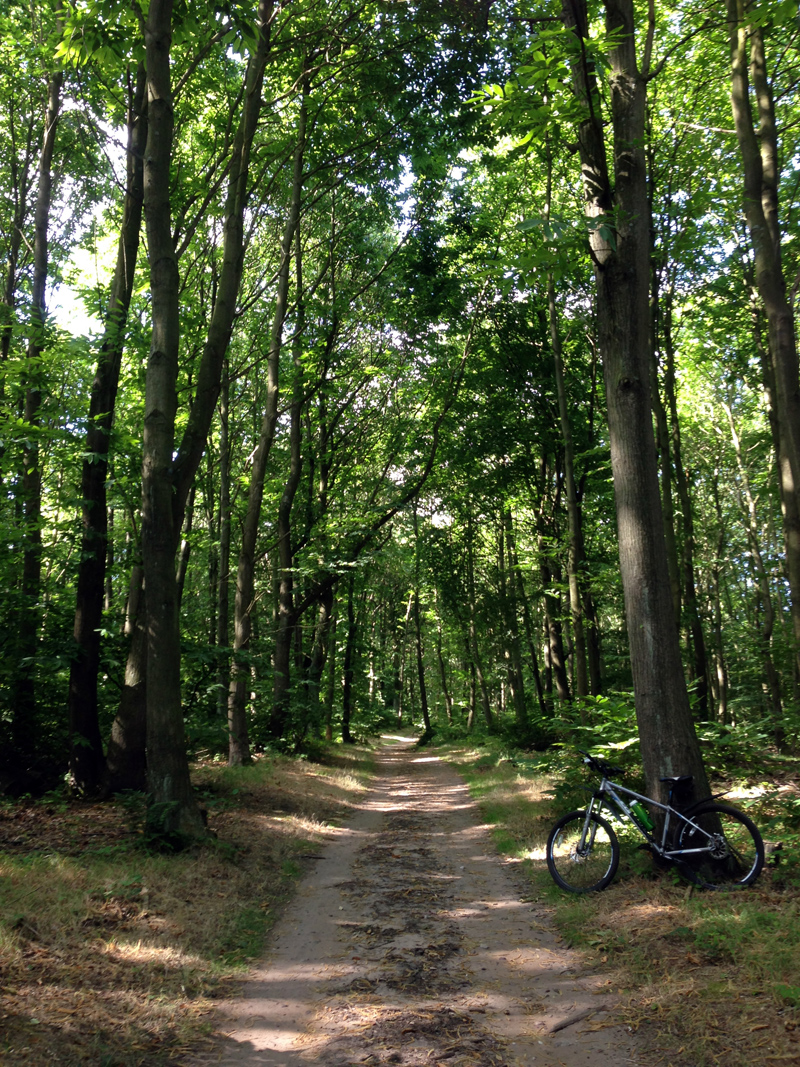 Mountain Biking at Sherwood Pines