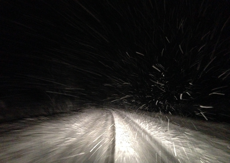 Snow falling on our drive home