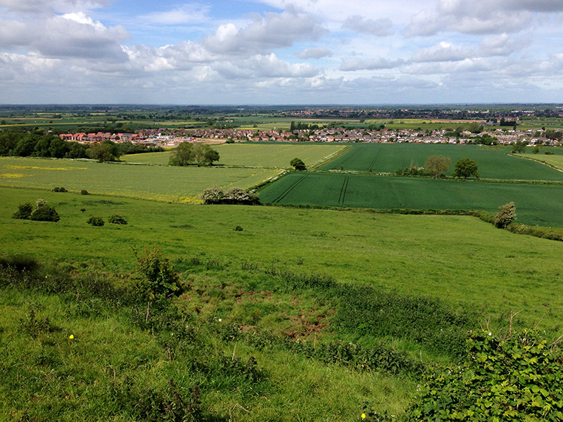 30DaysWild - Overlooking Lincoln