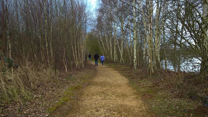 Nature Reserve - Taken on Microsoft Nokia Lumia 830