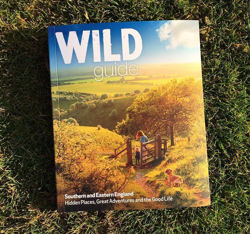 Splodz Blogz Wild Summer Photo Contest