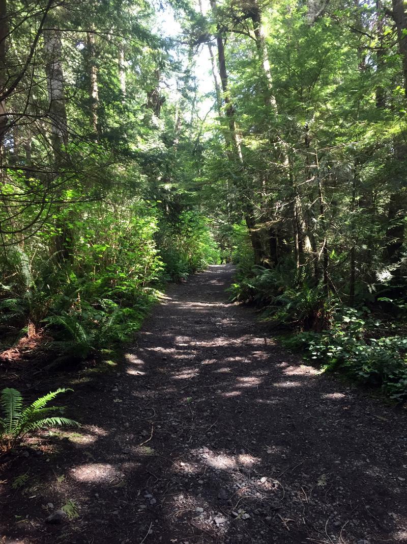 Zartusacan - Cape Flattery Trail