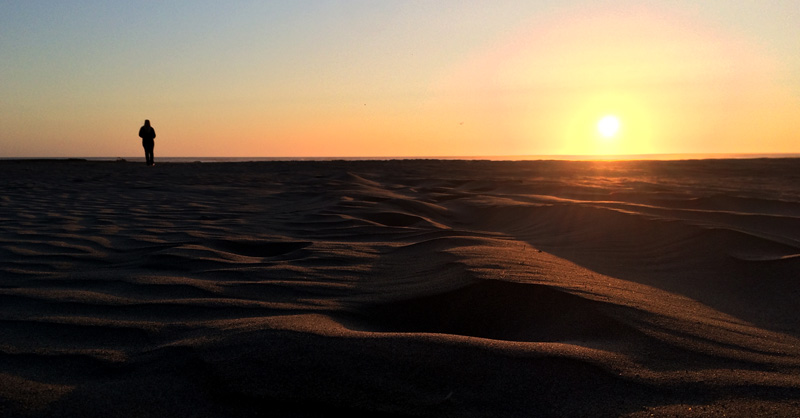 Zartusacan - Ocean Shores Sunset