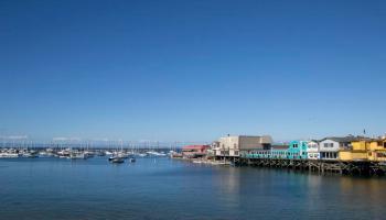 Zartusacan - Monterey