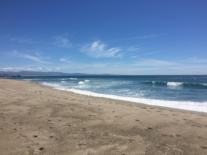 Zartusacan - Moss Landing State Beach