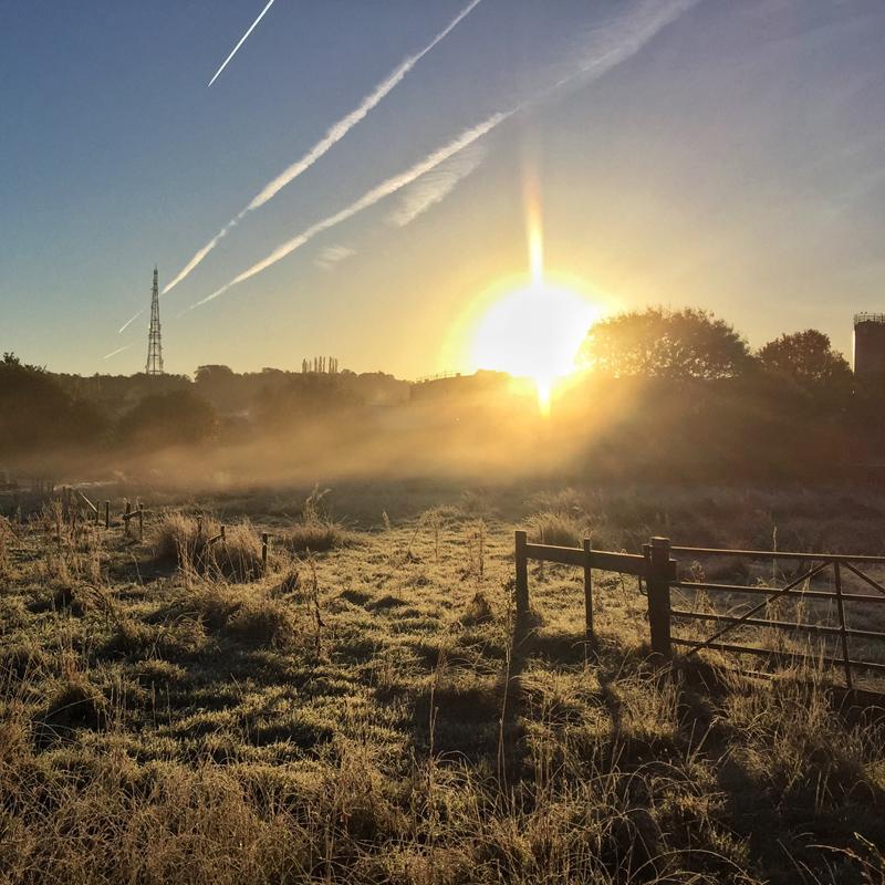 One Hour Outside - Morning Mist
