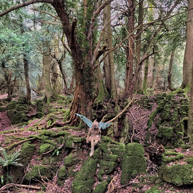 GETTING LOST IN NATURE AT PUZZLEWOOD