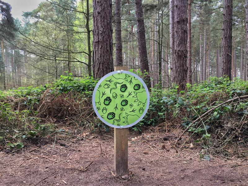 Splodz Blogz | Gruffalo Trail Sherwood Pines