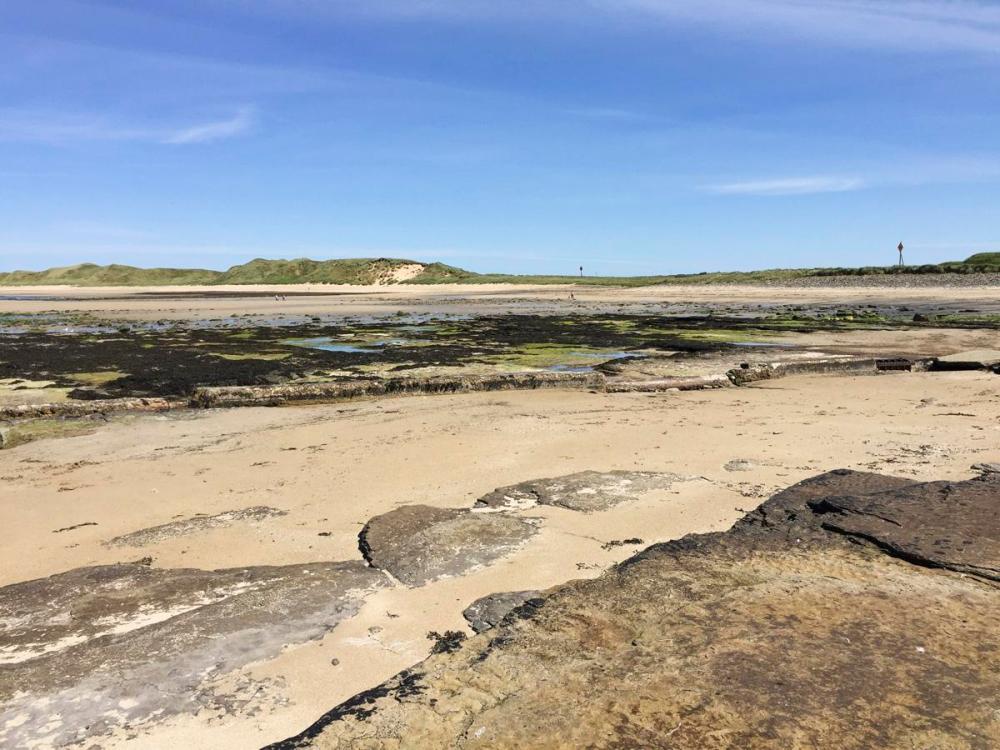 Splodz Blogz | NC500 | Castletown