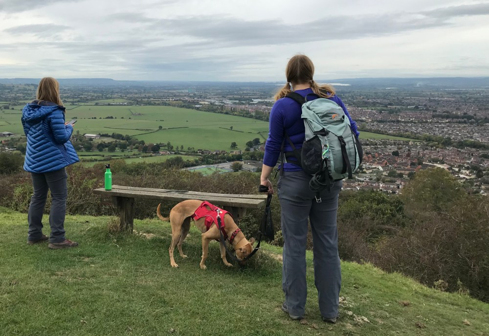 Splodz Blogz | GetOutside Activity Challenge - Walk the Dog at Robinswood