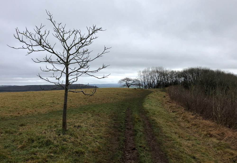 Splodz Blogz | Hiking Nibley, Stinchcombe and Coombe Hills