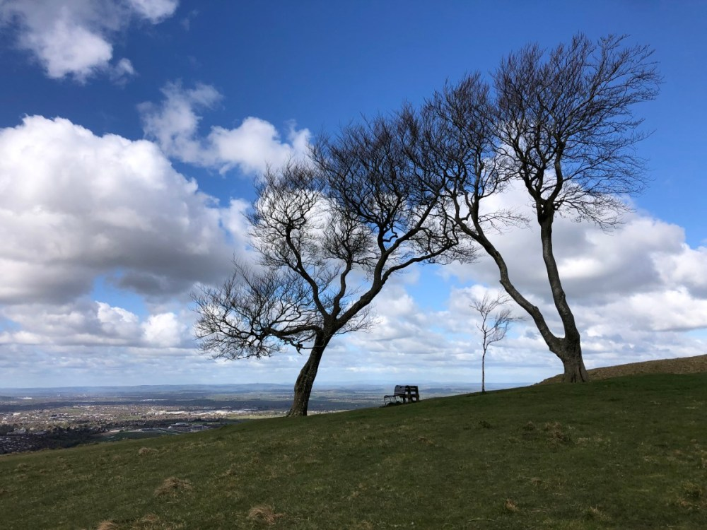 Splodz Blogz | The Three Sisters Trees on Cleeve Hill