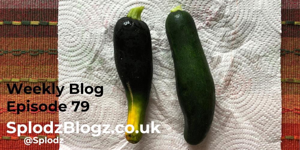 Splodz Blogz | The Weekly Blog Episode 79