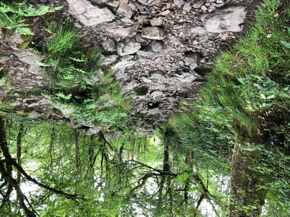 Splodz Blogz   Hiking the Four Falls Trail