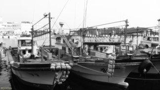 Fishing boats on Standby at Seogwipo Port, Jeju Island, SK