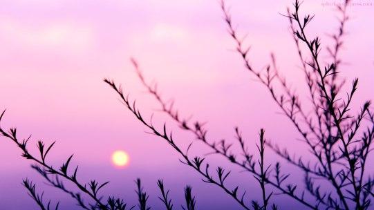 Summer Sunset at Chuncheon, SK