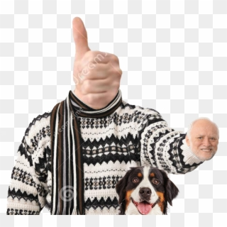 View Noice Hide The Pain Harold Sweater Hd Png Download
