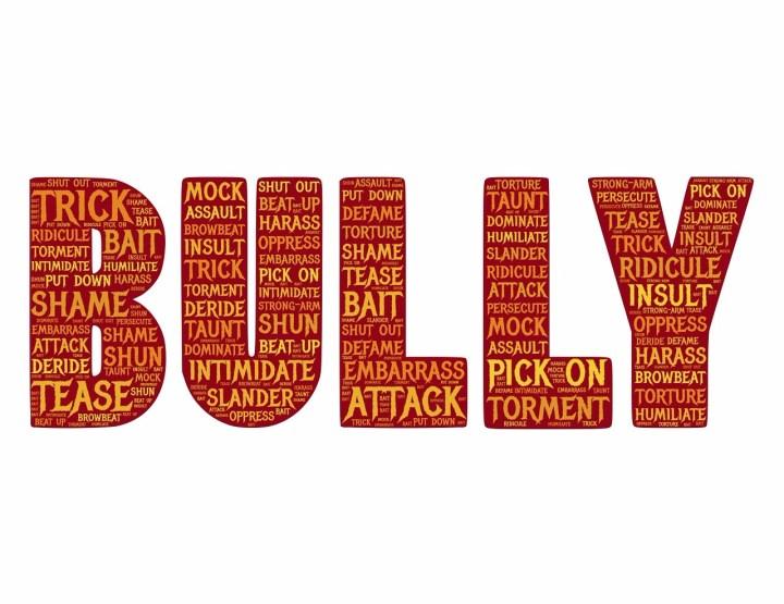 bully-655660_1280