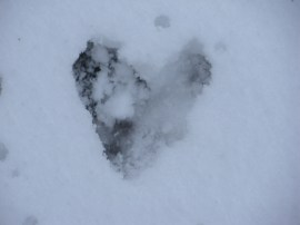 071 Heart in Snow