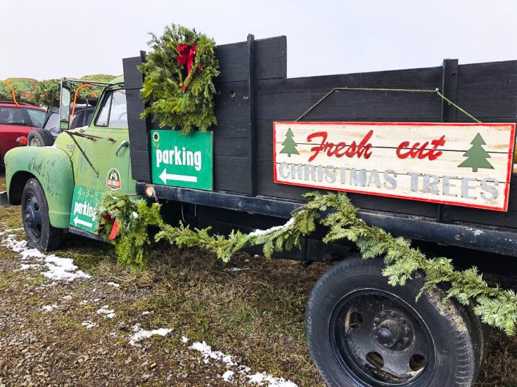 EVERYTHING YOU NEED TO KNOW ABOUT GETTING A CHRISTMAS TREE ON GREEN BLUFF