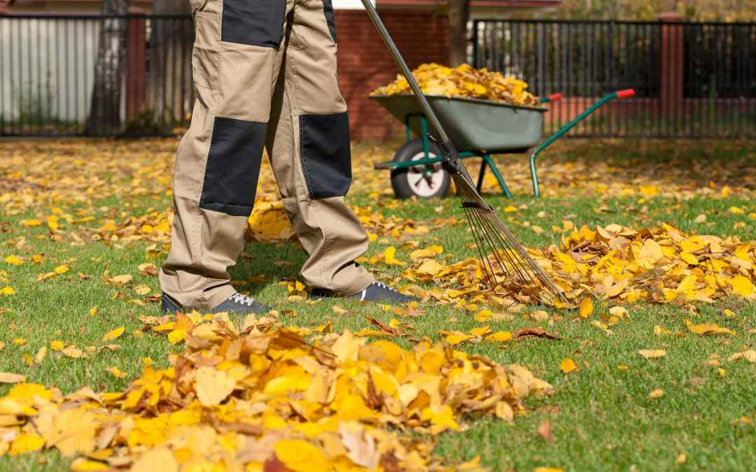 Fall Lawn Care Company working