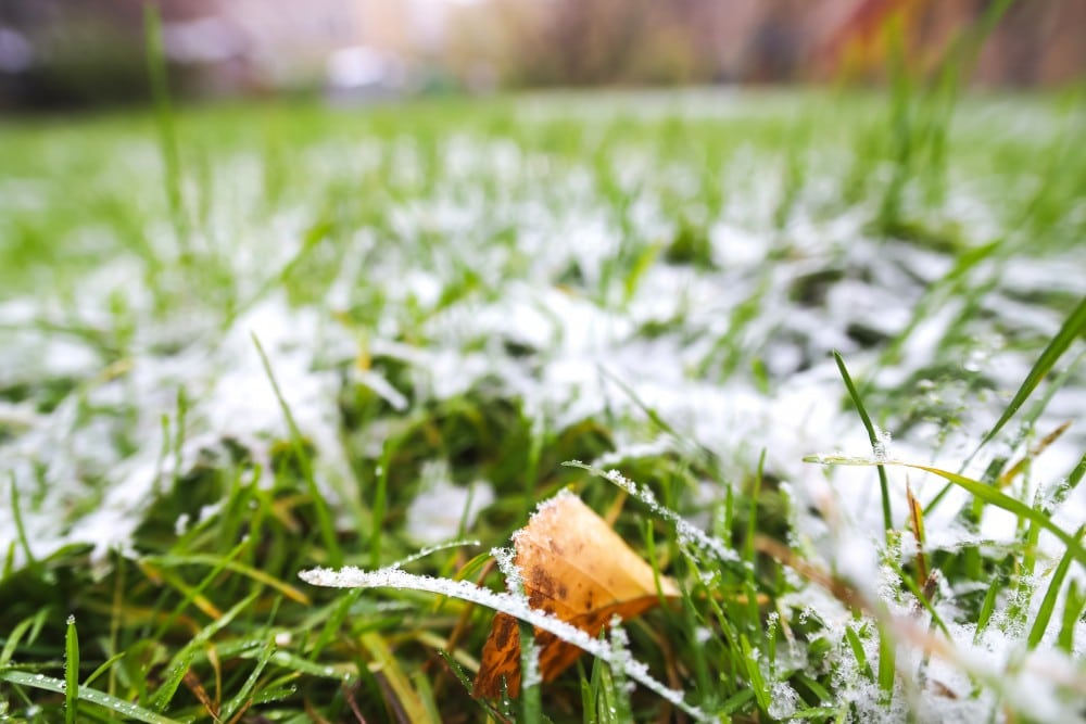 3 Tips For Caring For Your Lawn This Winter
