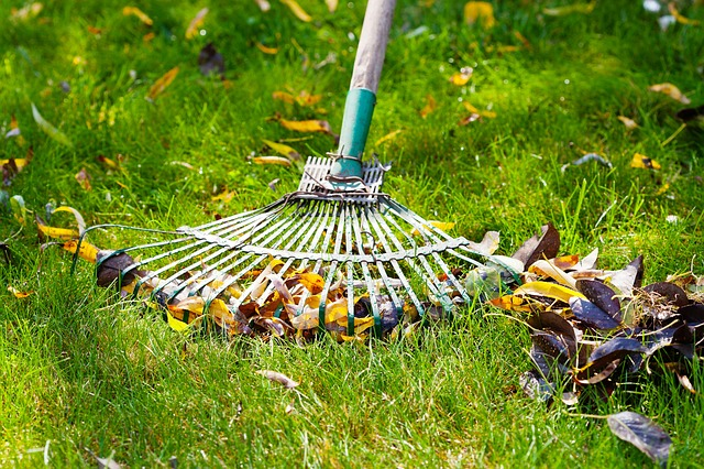 Fertilizing Your Lawn in the Late Fall