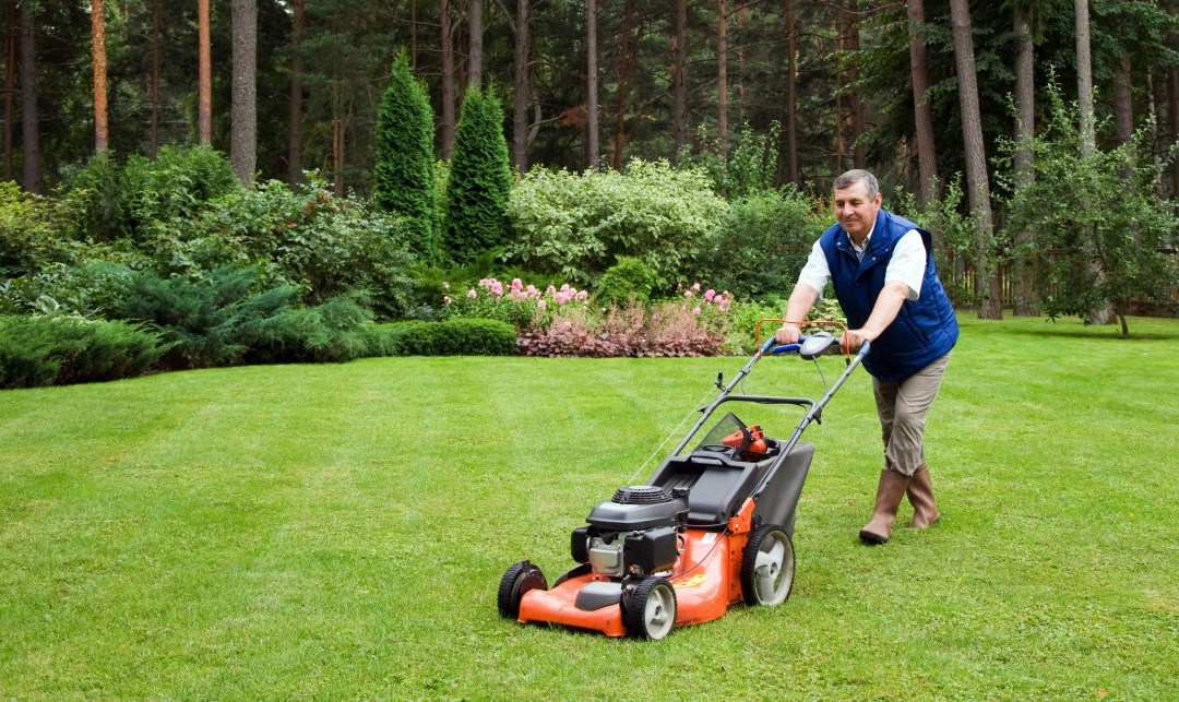 How to Care for your Lawn in Each Season of 2019